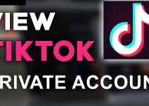 Private TikTok Accounts