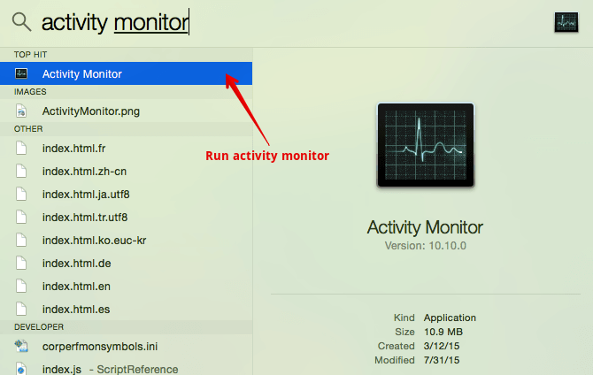 Activity monitor on Mac